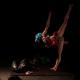 Solo Instinct avec Marie-Pierre Genovese